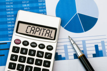 What share capital amount should be set up?
